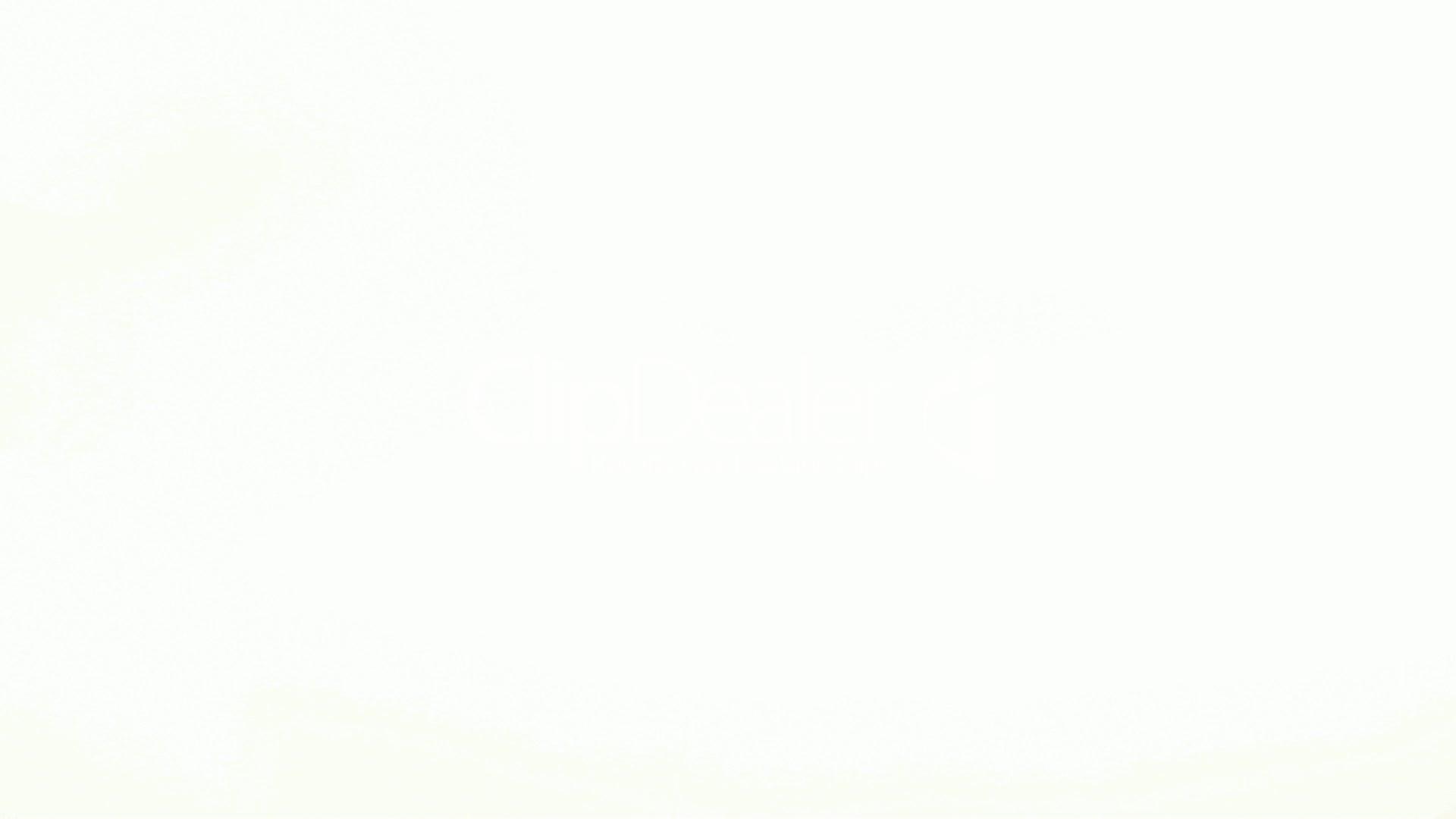 white-background-02